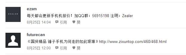 王自如zealer测评网:精准数码产品引流 网络推广 第5张