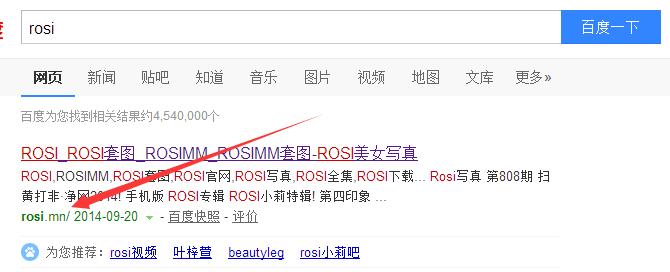 请用欣赏的眼光和我去ROSI写真站引流! 网络推广 第2张